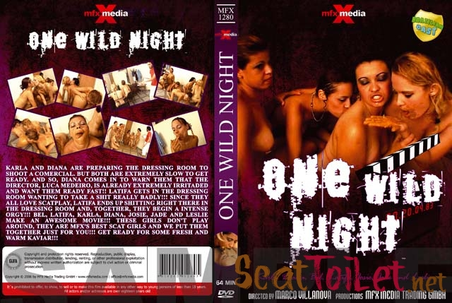 Latifa, Karla, Bel, Diana, Leslie, Josie, Jade - MFX-1280 One Wild Night [avi]