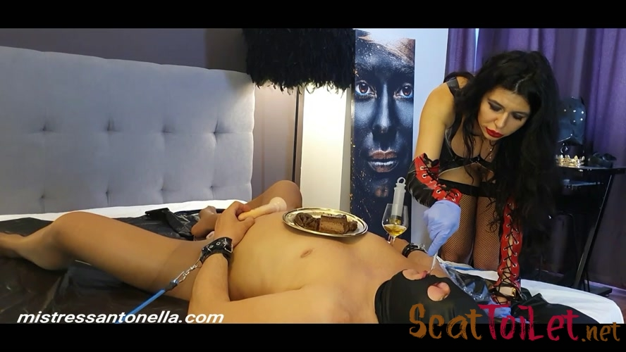 Birthday of the Supreme Goddess with MistressAntonellaSilicone  [MPEG-4]